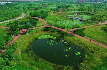 国内雨水再利用途径